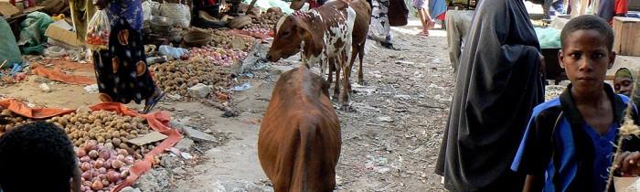 Un mercado popular de Mogadiscio_3_web