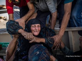 Mosul Dispatches